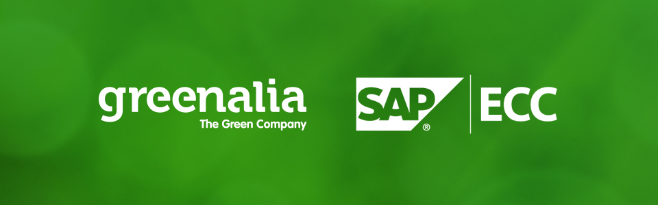 GREENALIA COMPLETES THE IMPLEMENTATION OF ERP: SAP ECC, IN ALL  GROUP´S SUBSIDIARIES