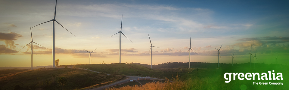 GREENALIA BUYS FIVE WIND FARMS WITH 73 MW OF POWER IN TOTAL
