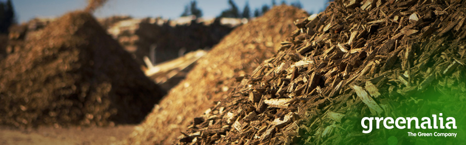 GREENALIA OBTAINS GREEN RATING FOR THE FINANCING OF ITS BIOMASS PLANT IN CURTIS-TEIXEIRO