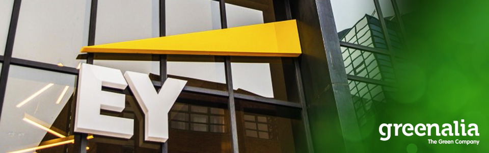GREENALIA DESIGNATES EY AS AUDITOR OF ITS ANNUAL ACCOUNTS FOR THE FOLLOWING THREE FISCAL YEARS