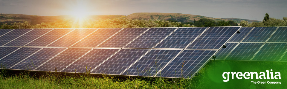 Greenalia Consolidates Its Solar Portfolio With 600 MW With Grid Access