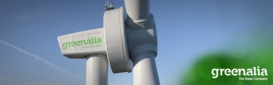 GREENALIA STARTS THE DEVELOPMENT OF THE FIRST FLOATING OFFSHORE WIND FARM OF GRAN CANARIA
