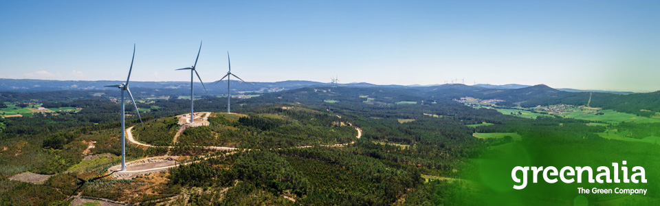 GREENALIA OBTAINS 135 ONSHORE-WIND-MW AWARD IN TODAY'S SPANISH RENEWABLE ENERGY CAPACITY AUCTION